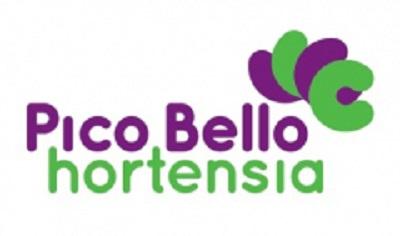 picobello-hortensia-afm-400